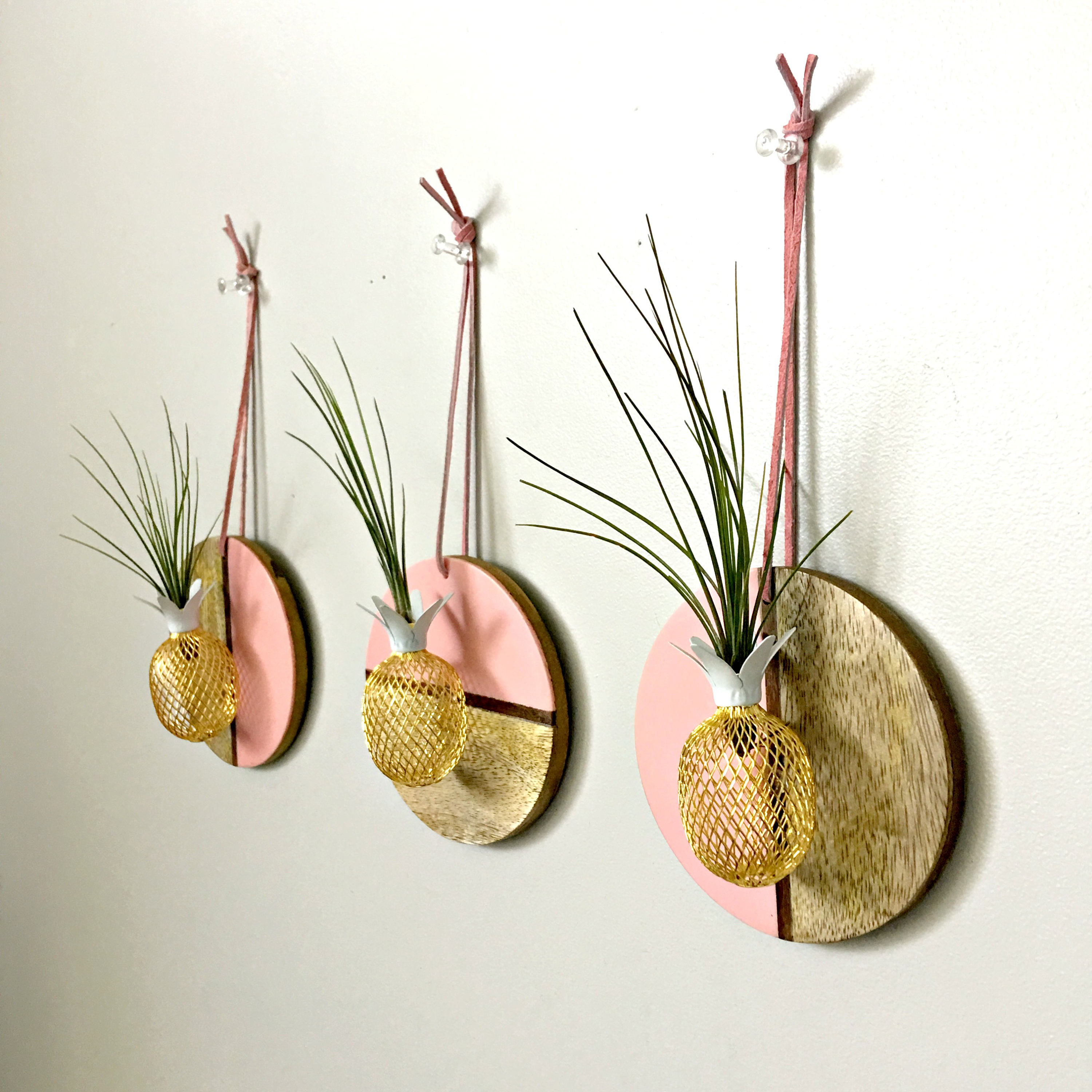 Air Plant Display Diamond Wood Wall Hanging With Pineapple And Air Plant