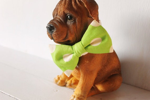 Dog bow tie >> Lime green and white spot bow with elastic >> Pet gift