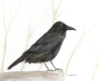 SALE Raven art Original watercolour Raven painting Black bird art Bird illustration Wall art Bird lover gift Raven illustration 10 x 7