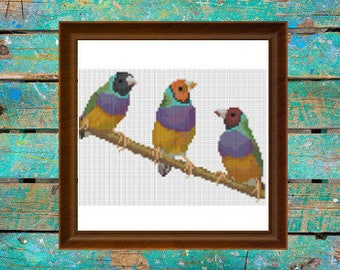 Gouldian Finch Trio Colorful Bird Cross Stitch **PATTERN ONLY**