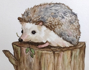 Hedgehog (original watercolor)