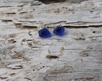 Cobalt Blue Sterling Silver Stud Earrings
