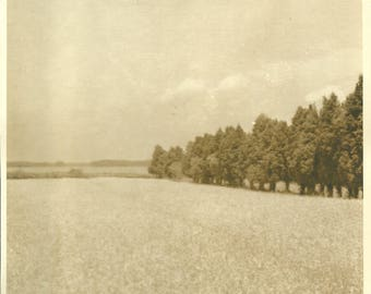 8 x 10 Vintage 1940's Photo of Open Field with Treeline