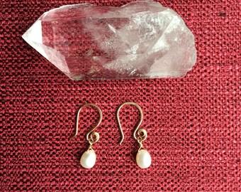 Pearl earrings on 14K gold fill swirl earwires