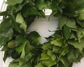 """Busy Ivy Wreath- 20"""""""