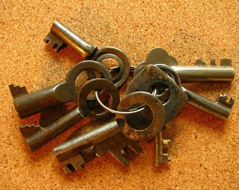 Vintage 8 Small Old Skeleton Keys