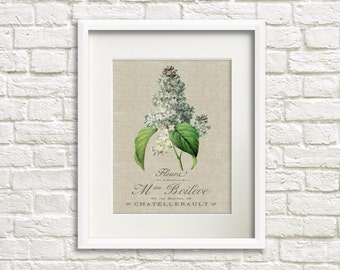 Linen Lilac - Botanical Artwork, Floral Art Prints, Farmhouse Chic Style Decor, Lilac Flower Print, French Country Decor, Wall Art Decor