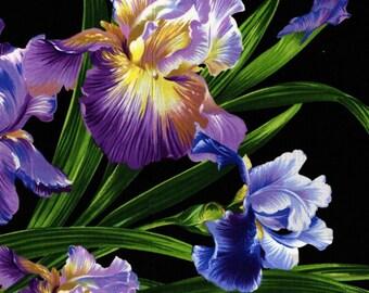 Micheal Miller  **Primavera Iris **   *59CM X 56CM PANEL*    Quilting, Landscape, wallhanging.