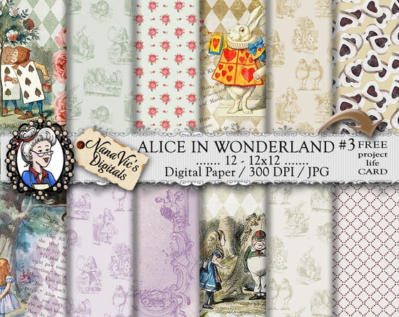 Alice in wonderland essay