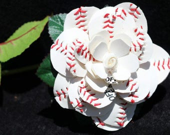 "Sweetheart Full Bloom Sports ""Roses"""