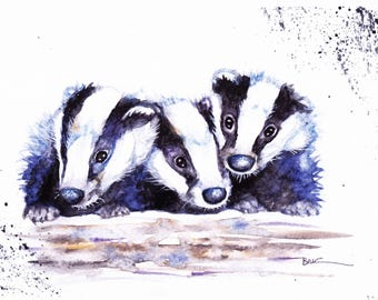 Original Watercolour Baby Badgers Print by Artist Be Coventry Wildlife Animal Art