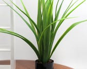 Tall Potted Plant - Miniature Modern decor, 1/12 or 1/16 scale