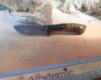 Eric's Damascus Oregon Elk Skinning Knife Buckeye Burl