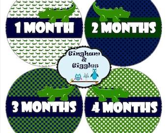 Monthly Baby Milestone Alligator Stickers Baby Shower Gift. Milestone stickers, monthly stickers, alligator stickers, baby boy milestone