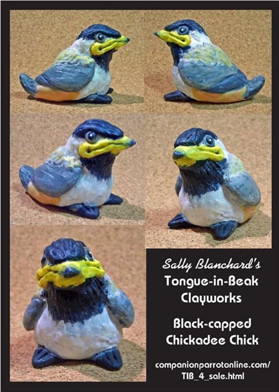 Precious Baby Black-capped Chickadee Sally Blanchard's Tongue-in-Beak Clayworks