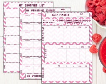Slimming World Food Diary Printable, Pink Colours, Food Diary, Diet Diary, Slimming World Food Planner, Print to fit your notebook