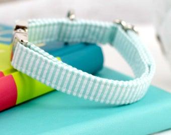Dog Collar - Palm Green & White Seersucker - Silver Hardware