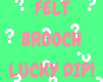 Felt Brooch Lucky Dip | Lucky Dip | Lucky Dip Bag | Surprise | Felt Brooch | Brooch | Felt | Cute | Bright | Colourful