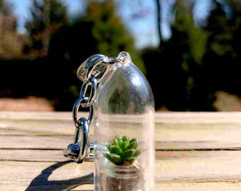 Keychain, Live Succulent Keychain, Keychain Gift, Specialized Keychain, Key chain, Keychain for her, Unique Keychain, Terrarium Keychain