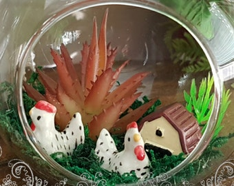 Chook Farm chicken terrarium glass ball