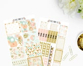 Flying High Planner Sticker Kit, for use with Erin Condren, Life Planner, Planner Stickers