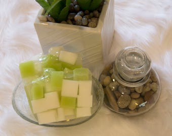 Self-Control - Lime and White Handcrafted Glycerin Soap
