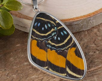 2 Inch Real Butterfly Wing Pendant in Sterling Silver- Butterfly Pendant Butterfly Necklace, Butterfly Wing Jewelry, Butterfly Jewelry J1169