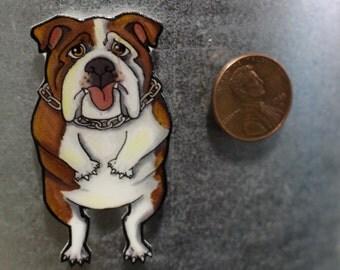 Cute Tan and White Bulldog Magnet