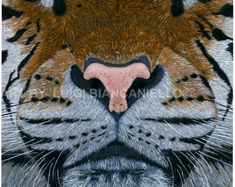 Tiger, Tiger Print, Tiger Painting, Tiger art, Wildlife art.
