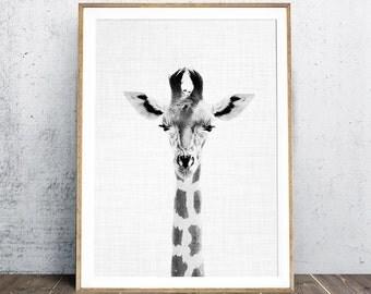 Nursery Print, Giraffe Print, Black And White Photography, Animal Nursery Print, Baby Animal Portraits, Boy Gift, Instant Download