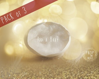 3 Digital Background  Newborn Backdrop Prop, Egg Shell bokeh, baby on tulle nest,photographie bébé,Neugeborene, bambino fotografia
