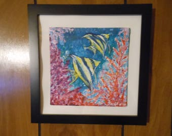 Angel Fish and Coral Reef