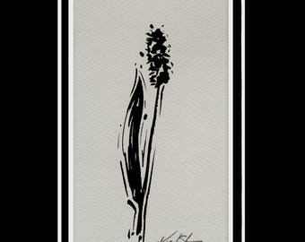 Hyacinth Flower Painting,  Black Illustration  art, Easter Watercolor Painting in 5 x 7 mat Minimalist Abstract art Kathy Morton Stanion
