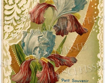 Antique French Friendship Souvenir Postcard of Two Eye of the Tiger Dutch Irises Digital Download