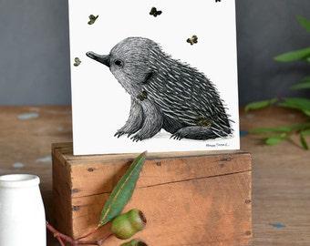 Gold: Echidna Puggle with Butterflies Fine Art Print