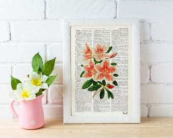 Summer Sale Pink Rhododendron flowers printed on  Dictionary or Encyclopedia Page BFL079