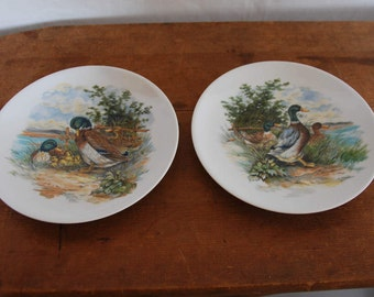 H. Arndt Pair of Duck Plates