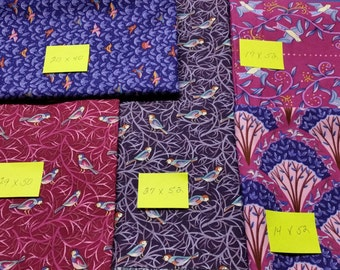 "5 Assorted cuts of fabric from ""Birds of A Feather"" by Free Spirit"