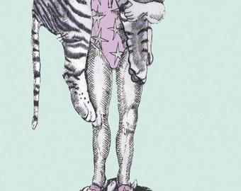 Animal & bird Circus illustration greeting cards by Sassy Luke Artworks. Pack of 5 original illustrations