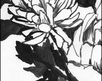 Black and white brush  Painting, Fine art giclee print 8.5x11 Digital illustration, Home Decor Naturalist Art, nature, decor gift idea