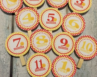 LITTLE SUNSHINE 1st Birthday Photo Clips Banner Newborn - 12 months - Red Yellow -  Party Packs Available