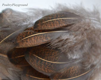 3-4 inch Feather Tulley Fluffy Brown Black Tan Speckled 18 count