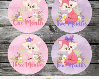 Baby Monthly Stickers, Instant Download DIY Printable Baby Milestone Stickers -Fox Baby Monthly Sticker -Photo Prop -Gift -Baby Shower