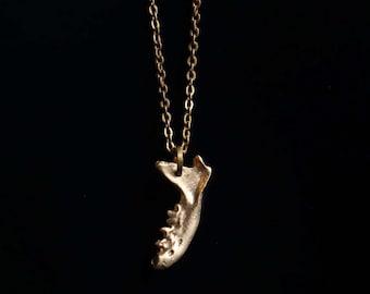 Handcrafted Bronze Mink Jawbone ~ Bone Jewelry ~ Gothic Jewelry ~ Taxidermy ~ Oddities ~ Bronze Jewelry