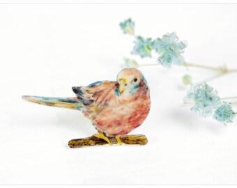 Brooch parakeet,  parakeet brooch,  bird jewelry,  bird brooch, illustration brooch, parakeet jewelry, drawing parakeet, rosy, wearable art