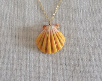 SALE -- Sunrise Shell Necklace, Gold Filled Chain