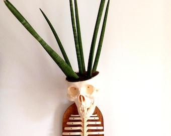 skull head wall art
