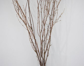 Natural Branch/Curly Twigs/Branches/Centerpiece decor/ Winter wonderland/Decoration Branches/Gold Branches/Glitter Branches/Silver Branches