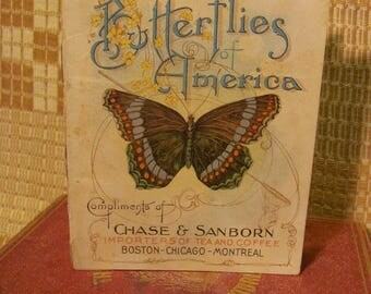 1900 'Butterflies in America' Chase & Sanborn Importers of Tea and Coffee Printed by Niagara Litho. Co. Buffalo