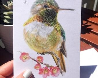 Pretty Emerald Allen's Hummingbird, Greating Card